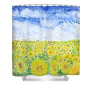 Sunflowers In A Field In  Texas Shower Curtain
