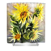 Sunflowers In Abstract Shower Curtain