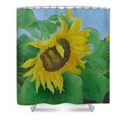 Sunflowers In The Wind Colorful Original Sunflower Art Oil Painting Artist K Joann Russell           Shower Curtain