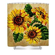 Sunflowers On Wooden Board Shower Curtain