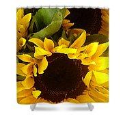 Sunflowers Tall Shower Curtain