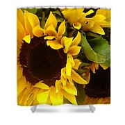 Sunflowers Wide Shower Curtain