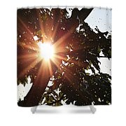 Sunhine And Raindrops Shower Curtain