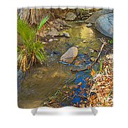 Sunlight On Andreas Creek In Indian Canyons-ca Shower Curtain
