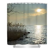 Sunlight On The Lake With Pampas Grass Shower Curtain