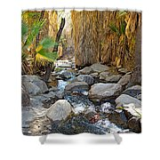 Sunlight Over Rocky Andreas Creek In Indian Canyons-ca Shower Curtain
