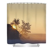 Sunlight Shining Behind A House In A Shower Curtain