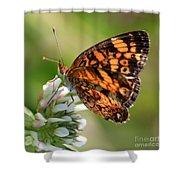 Sunlight Through Butterfly Wings Shower Curtain
