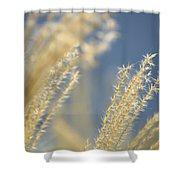 Sunlit Adagio Shower Curtain