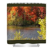 Sunlit Autumn Shower Curtain