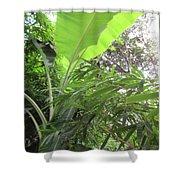 Sunlit Banana With Bamboo Shower Curtain