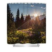 Sunlit Flower Meadows Shower Curtain