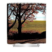 Sunlit Pasture At Moore State Park Shower Curtain