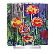 Sunlit Poppies Shower Curtain