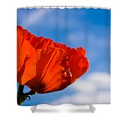 Sunlit Poppy Shower Curtain