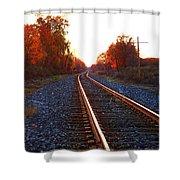 Sunlit Tracks Shower Curtain