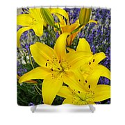 Sunny Asiatics With Lavender Shower Curtain