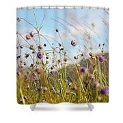 Sunny Bliss. Rest And Be Thankful. Scotland Shower Curtain