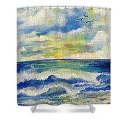 Sunny Day II Shower Curtain