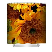 Sunny Easter Bouquet Shower Curtain