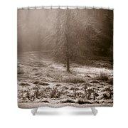 Sunny Frosty Douglassville Shower Curtain