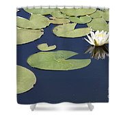 Sunny Lily Pond Shower Curtain