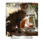 Sunny Morning Feather Shower Curtain
