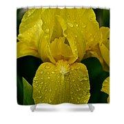 Sunny Rain Shower Curtain