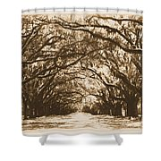 Sunny Southern Day With Old World Framing Shower Curtain