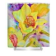Sunny Splash Of Orchids Shower Curtain