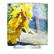 Sunnyabstracted Shower Curtain