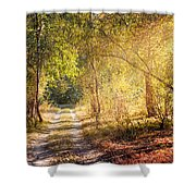 Sunray In The Autumn Forest Shower Curtain