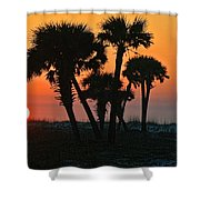 Sunrise And Group Of Palm Trees Shower Curtain