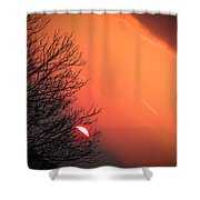Sunrise And Hibernating Tree Shower Curtain