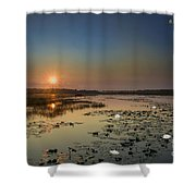 Sunrise And Water Lilies Shower Curtain