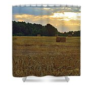 Sunrise At The Wheat Field Shower Curtain