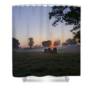 Sunrise At Whitemarsh Shower Curtain
