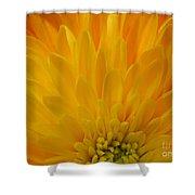 Sunrise Dahlia Abstract Shower Curtain