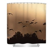 Sunrise Fog And Incoming Shower Curtain by Skip Willits