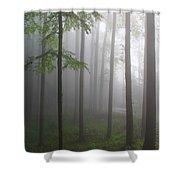 Sunrise Fog Shower Curtain by Melissa Petrey