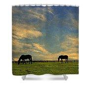 Sunrise Graze Shower Curtain by Darren Fisher