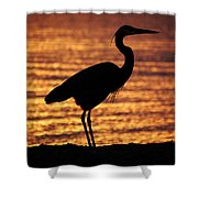 Sunrise Heron Shower Curtain