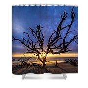 Sunrise Jewel Shower Curtain by Debra and Dave Vanderlaan