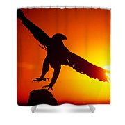 Sunrise Liftoff Golden Eagle Threatened Species Shower Curtain