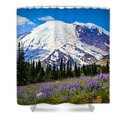 Sunrise Lupines Shower Curtain