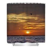 Sunrise On Tampa Bay Shower Curtain