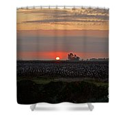Sunrise On The Cotton Field Shower Curtain