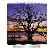 Sunrise Over Coongee Lakes With Moon.  Shower Curtain