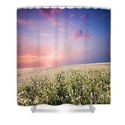 Sunrise Over Flower Land Shower Curtain