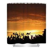 Sunrise Over The Milo Field Shower Curtain